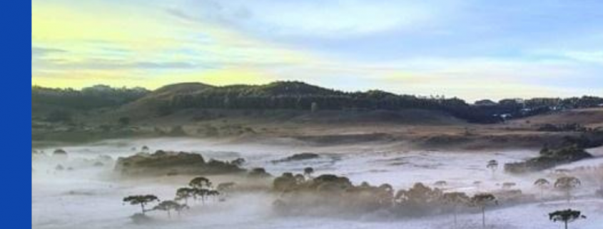 Temporada de inverno na Serra em SC deve reverter perdas do ano passado