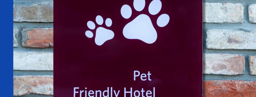 Destino Pet Friendly
