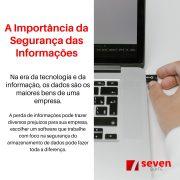 Seven Suite - A importância da segurança das informações